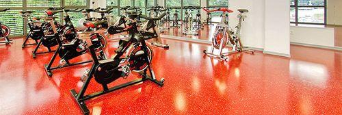 Тренажерные и залы тяжелой атлетики